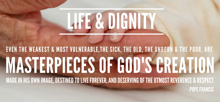 Life & Dignity Landing Page Version 3