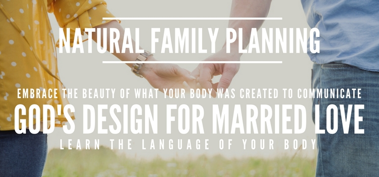 Natural Family Planning Landing Page (3)